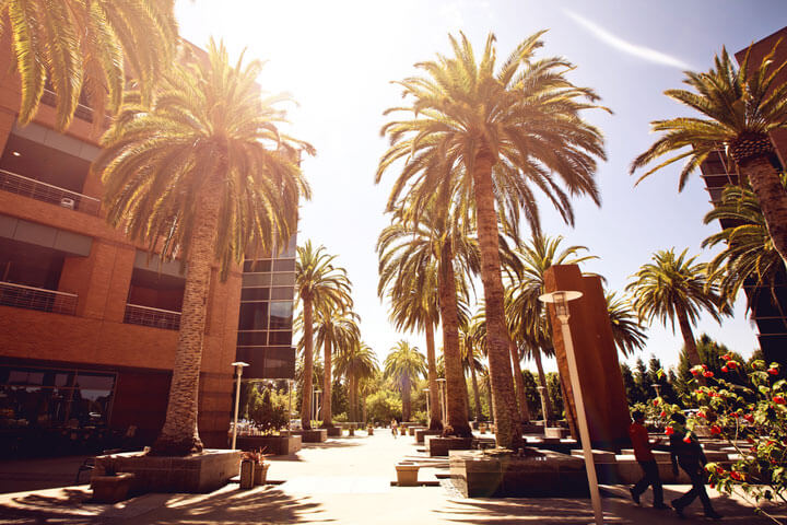Silicon Valley: Ein wahres Paradies für Techies