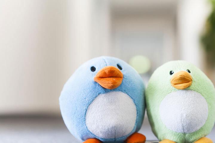 Wo kleine Vögel auf bunte Teppiche treffen