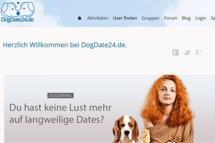 Dogdate24, Unidesq, Bonsum, Dealers-planet, Sessionbird