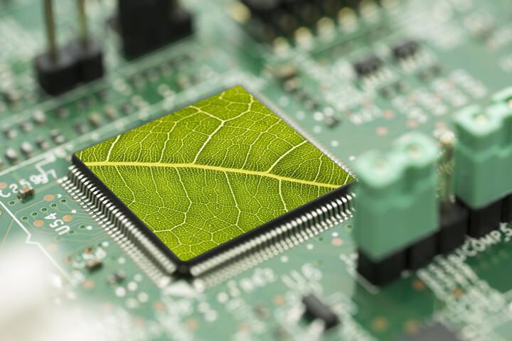 Wie Start-up mit Green-IT nachhaltig arbeiten können