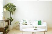 Maues Wachstum bei Home24 und Westwing