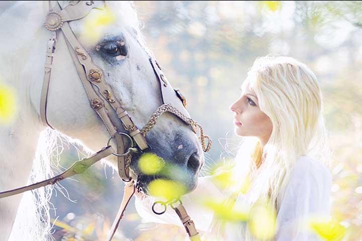GoldStallion: Bling-Bling für Einhörner und 08/15-Pferde