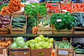 Atomico und Balderton halten 32,8 % am Farming-Überflieger Infarm