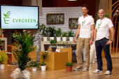 Evrgreen – Pflanzen für Menschen ohne grünen Daumen