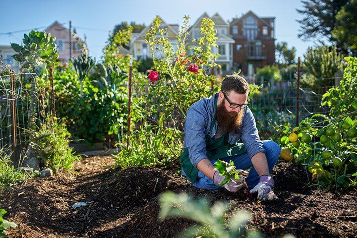 Ein Startup, das Helfer für die Gartenarbeit findet