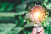 5 neue Startups: Vaayu, Oxolo, climatiq, Maelt, openpack