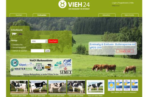 vieh24_3