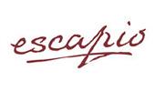 ds_escapio1