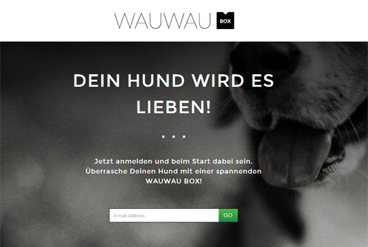Start-up-Radar: Wauwau Box