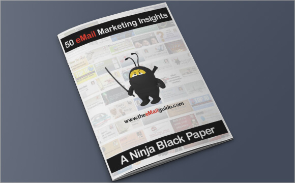 ebook8-50-email-marketing-insights