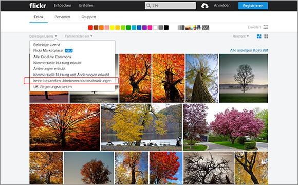 kostenlose-Bilder-flickr1
