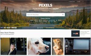 kostenlose-Bilder-pexels