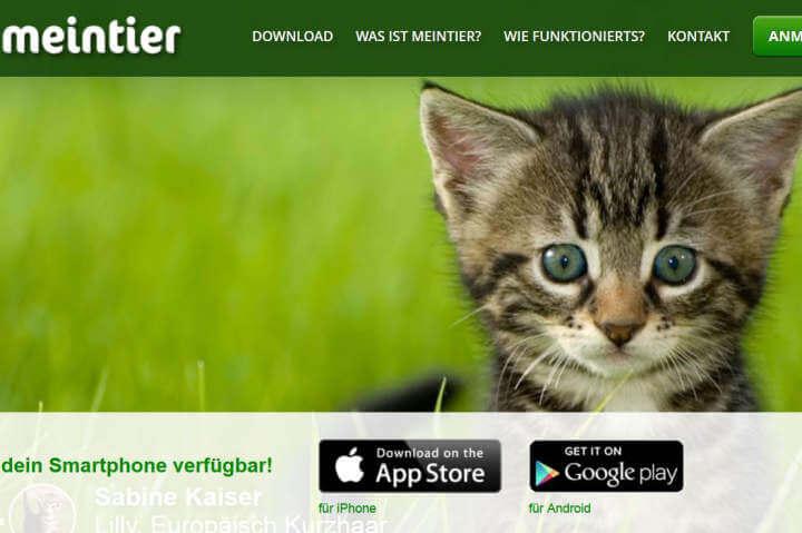 MeinTier, Energieheld, CineApp, Anlageimmobilien.de, Gerabo
