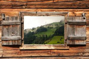 Smart Green Accelerator: Ein Brutkasten für grüne Ideen