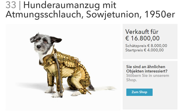 ds-auctionata-hund