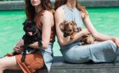 Für Von Hund schmissen zwei Gründer ihre guten Jobs