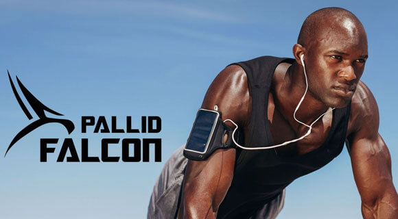 PallidFalcon