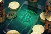 AfD-Politikerin Alice Weidel macht jetzt in Bitcoin