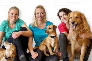 """""""Ich dreh Dorsch"""": Leckere Snacks für Hunde!"""